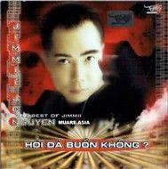 Hỏi Đá Có Buồn Không (Tình Music) - Jimmy Nguyễn