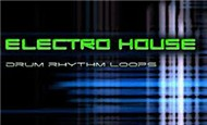 Electro House Collection (2011)