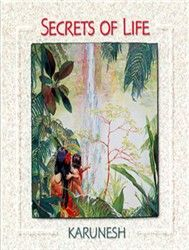 Secrets Of Life (New Age) - Karunesh