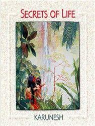 Secrets Of Life (New Age) - Karunesh