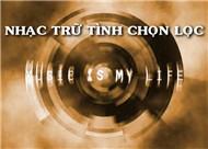 Nhạc Trữ Tình Chọn Lọc - Various Artists