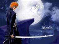 Bleach (Anime, Tập 266-274)