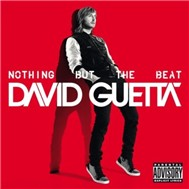 Nothing But The Beat (2011)