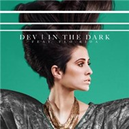 In The Dark (Single 2011)