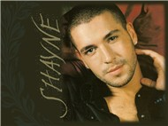 Best Songs Collection - Shayne Ward