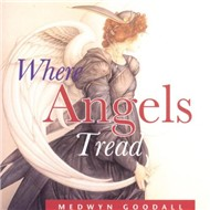 Where Angels Tread (1996)