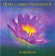 Heart Chakra Meditation II Coming Home