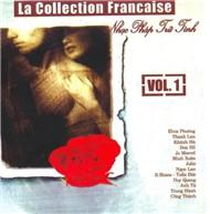 Nhạc Pháp Lời Việt Trữ Tình (Vol 1) - Nhiều Ca Sĩ