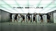 T-ara Collection ( 2011+2012)