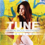 Calling (Remixes EP 2012)