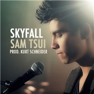 Skyfall (Single 2012)