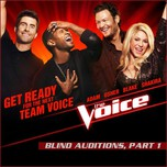 Blind Auditions, Part 1 (The Voice US Season 4 - 2013)