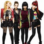 2NE1 Collection (2013)