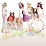 Hello Venus Collection (2013)