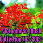 Vietnamese Music Collection (05/2013)