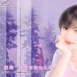 Nhạc Hoa Không Lời Collection (2013) - Various Artists