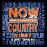 Now That's What I Call Country (Vol. 6 - 2013)
