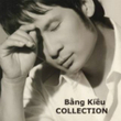 The Best Songs Of Bằng Kiều (2013)