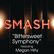 Bittersweet Symphony (Smash Cast Version)